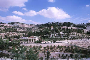 Mount of Olives - photo from FreeStockPhotos.com